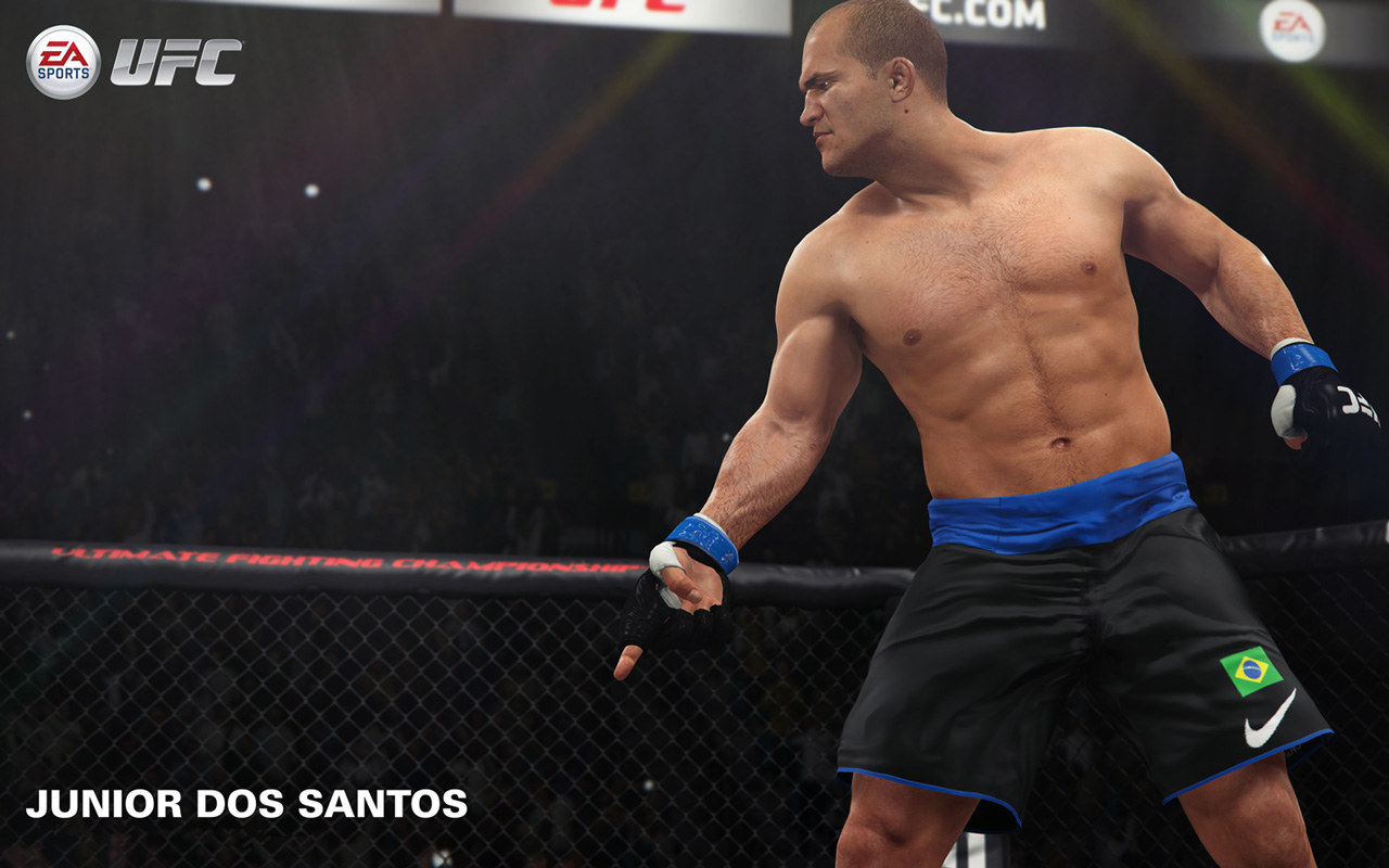 Free EA Sports UFC Wallpaper in 1280x800