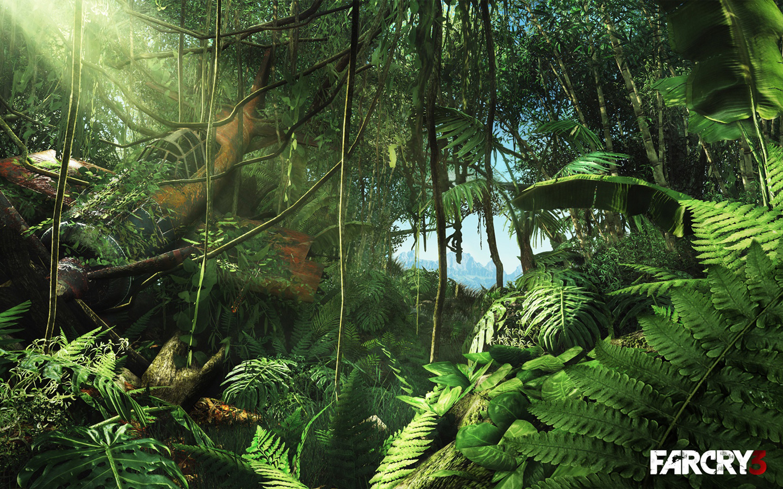 Free Far Cry 3 Wallpaper in 1440x900