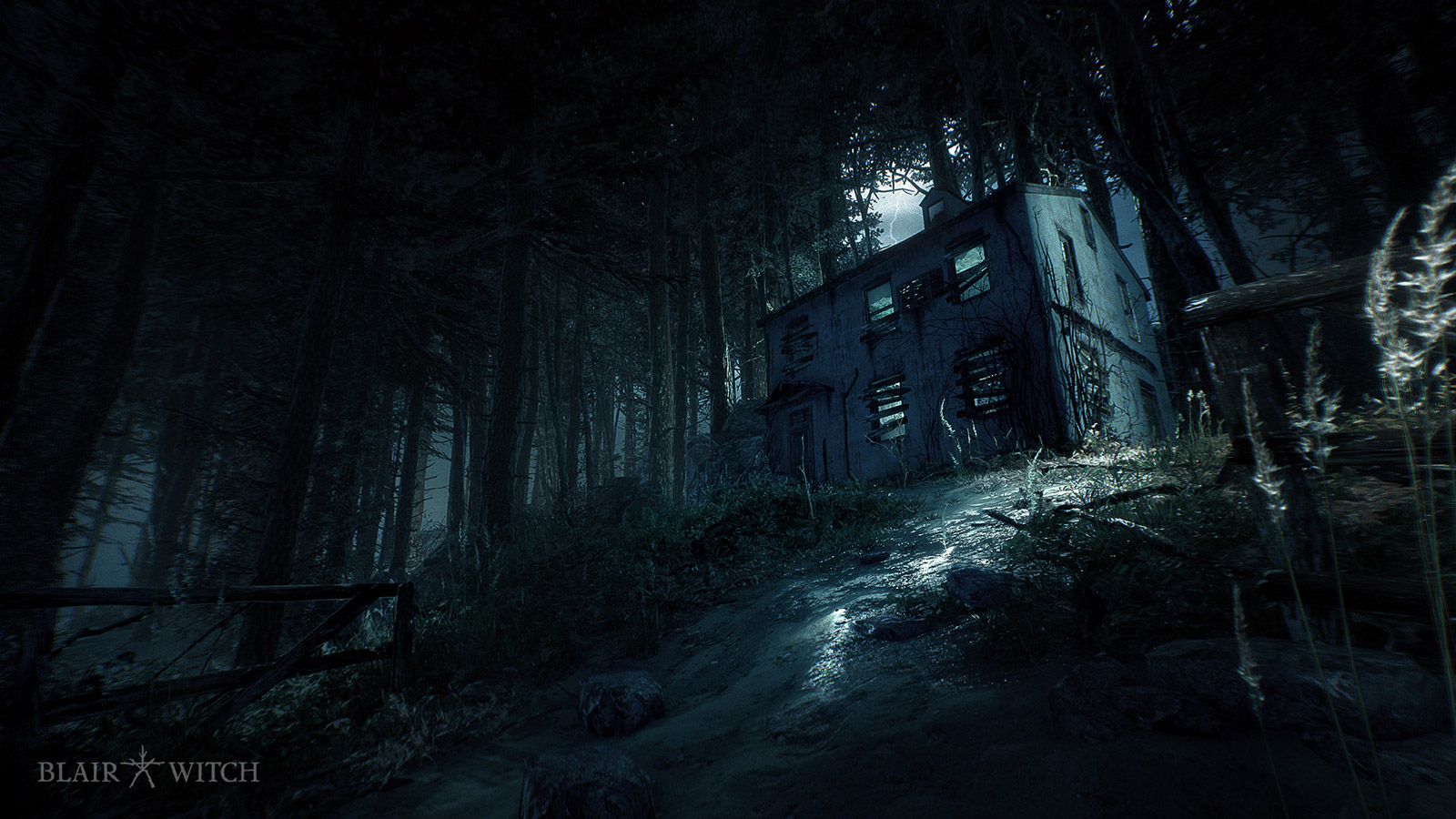 Blair Witch Wallpaper in 1600x900