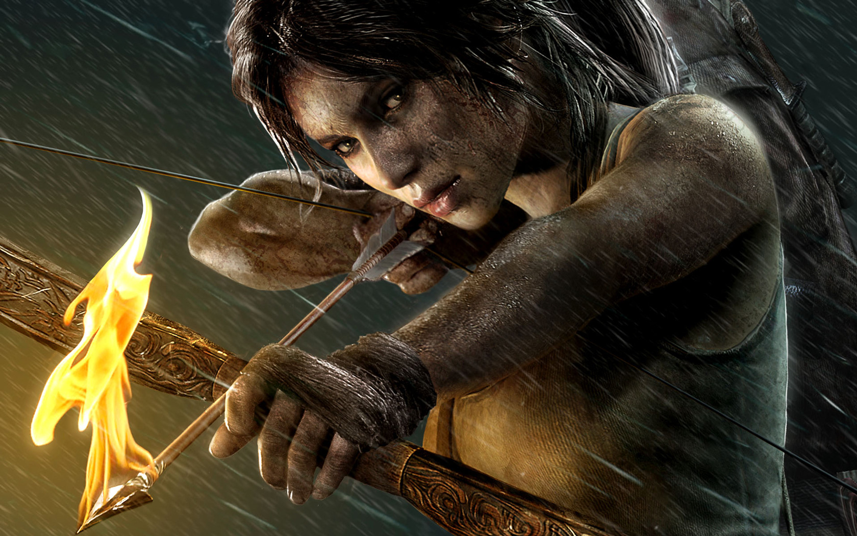 Free Tomb Raider Wallpaper in 1680x1050