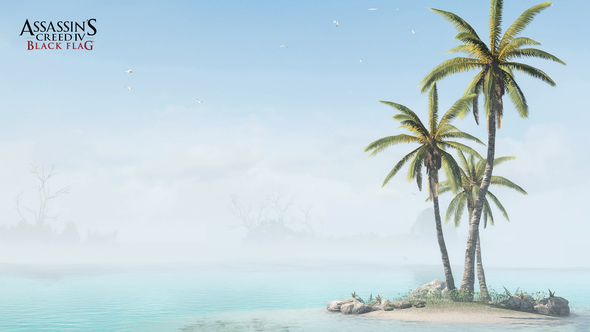 Assassin's Creed IV: Black Flag Wallpaper in 1920x1080