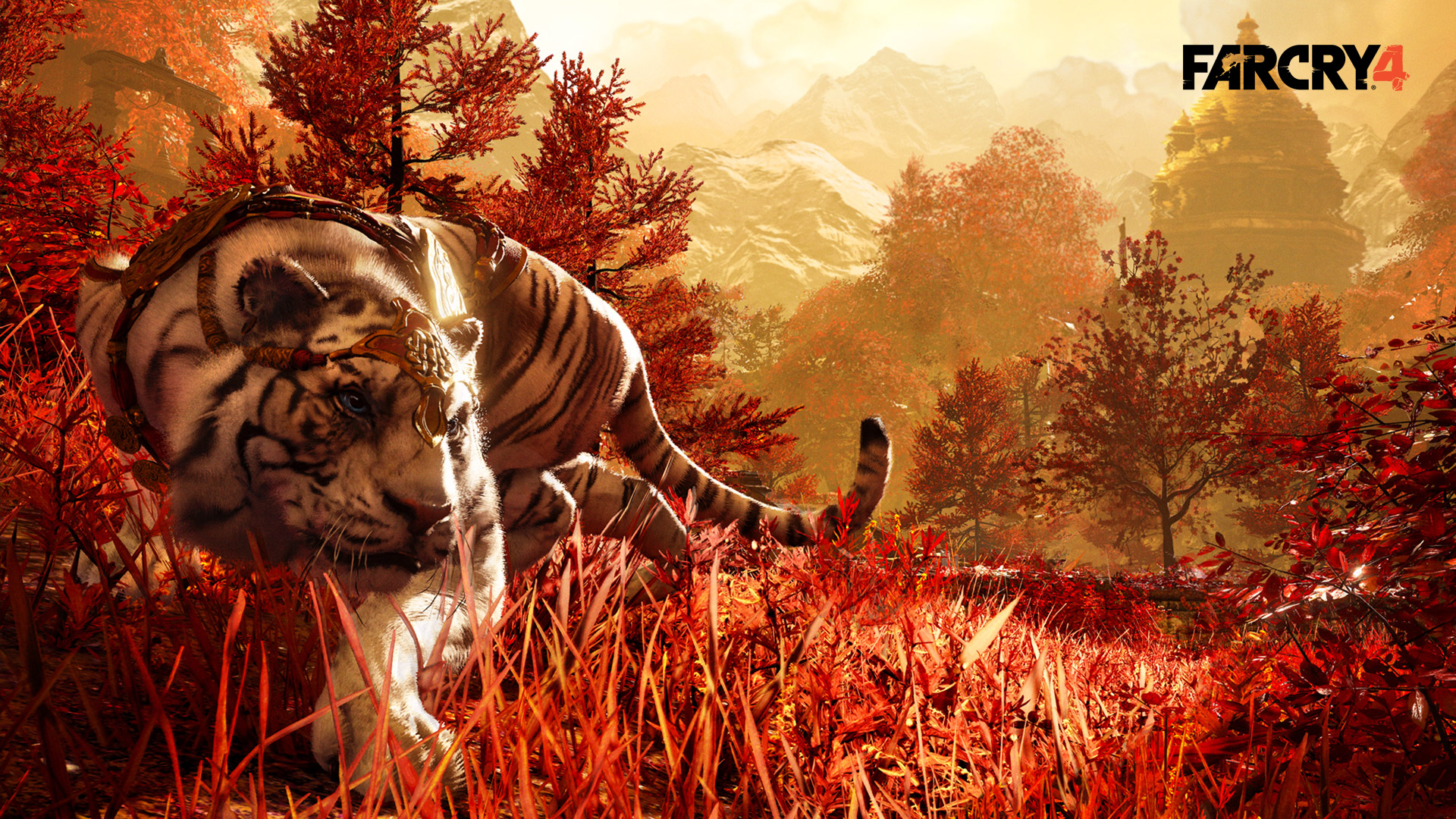 Far Cry 4 Wallpaper in 1920x1080
