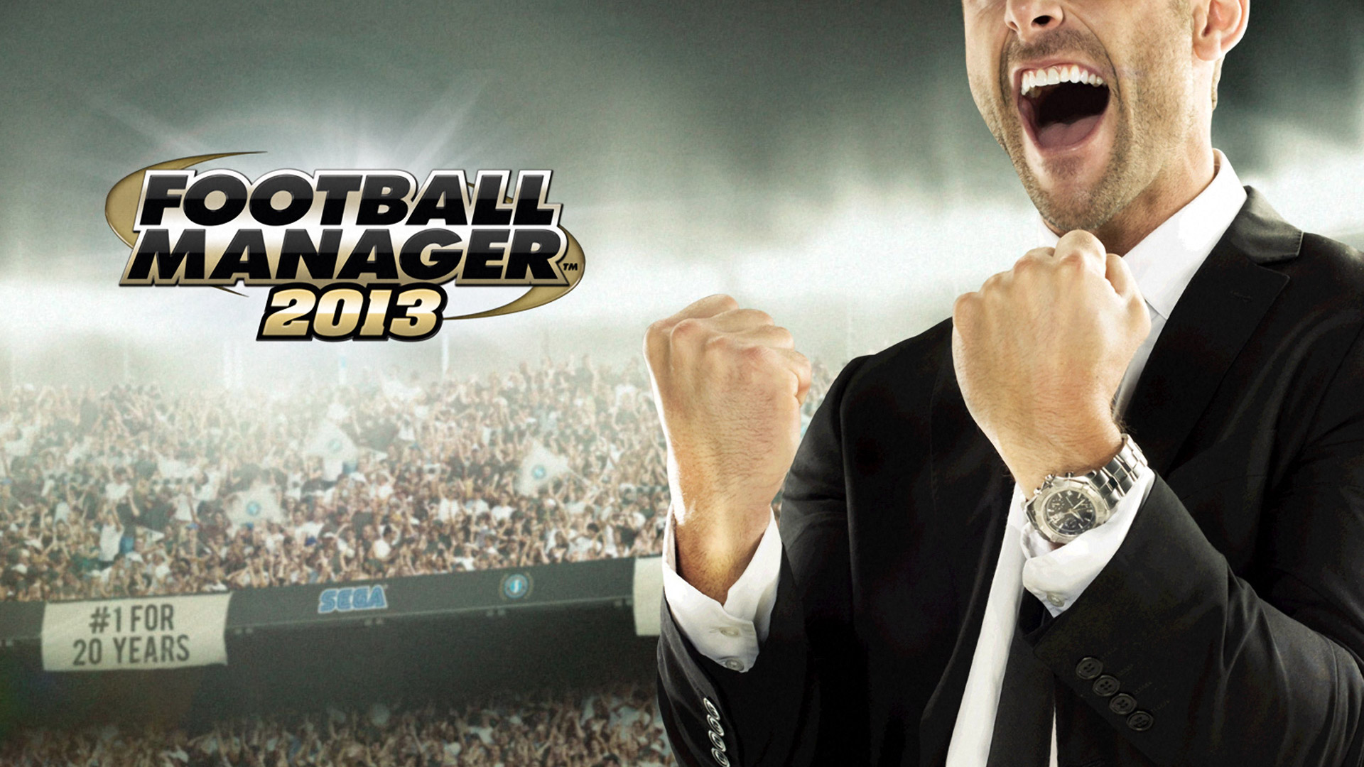 Free Football Manager 2013 Wallpaper in 1920x1080