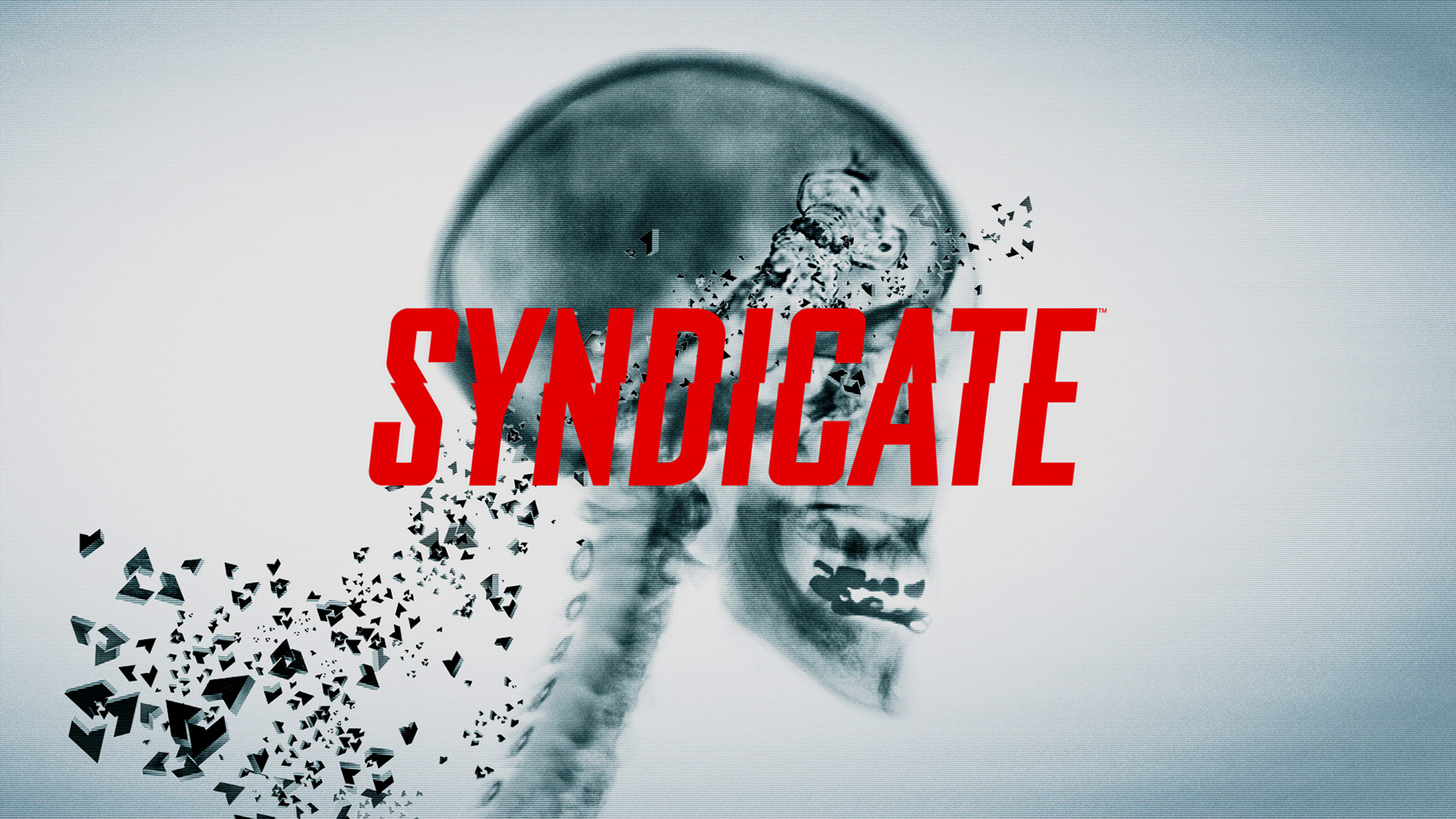 Syndicate Wallpaper in 1920x1080