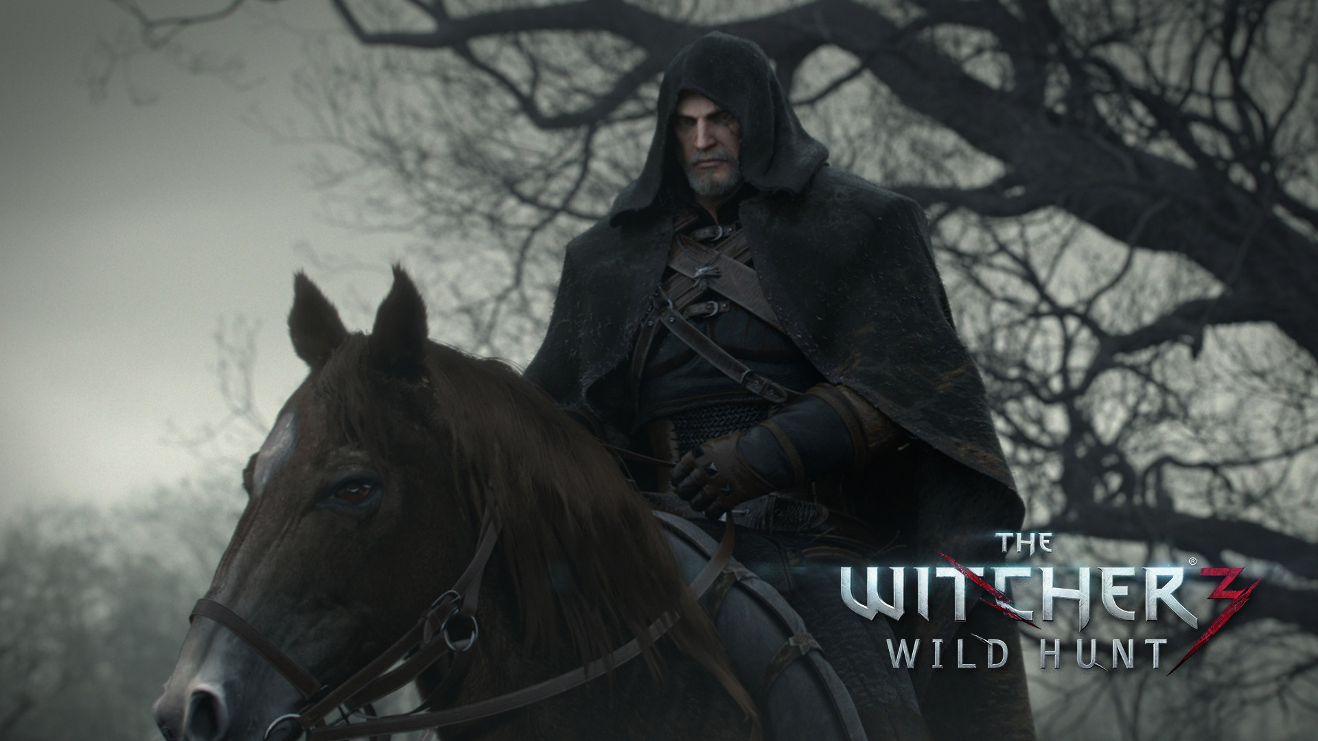 The Witcher 3 Wallpaper in 1920x1080