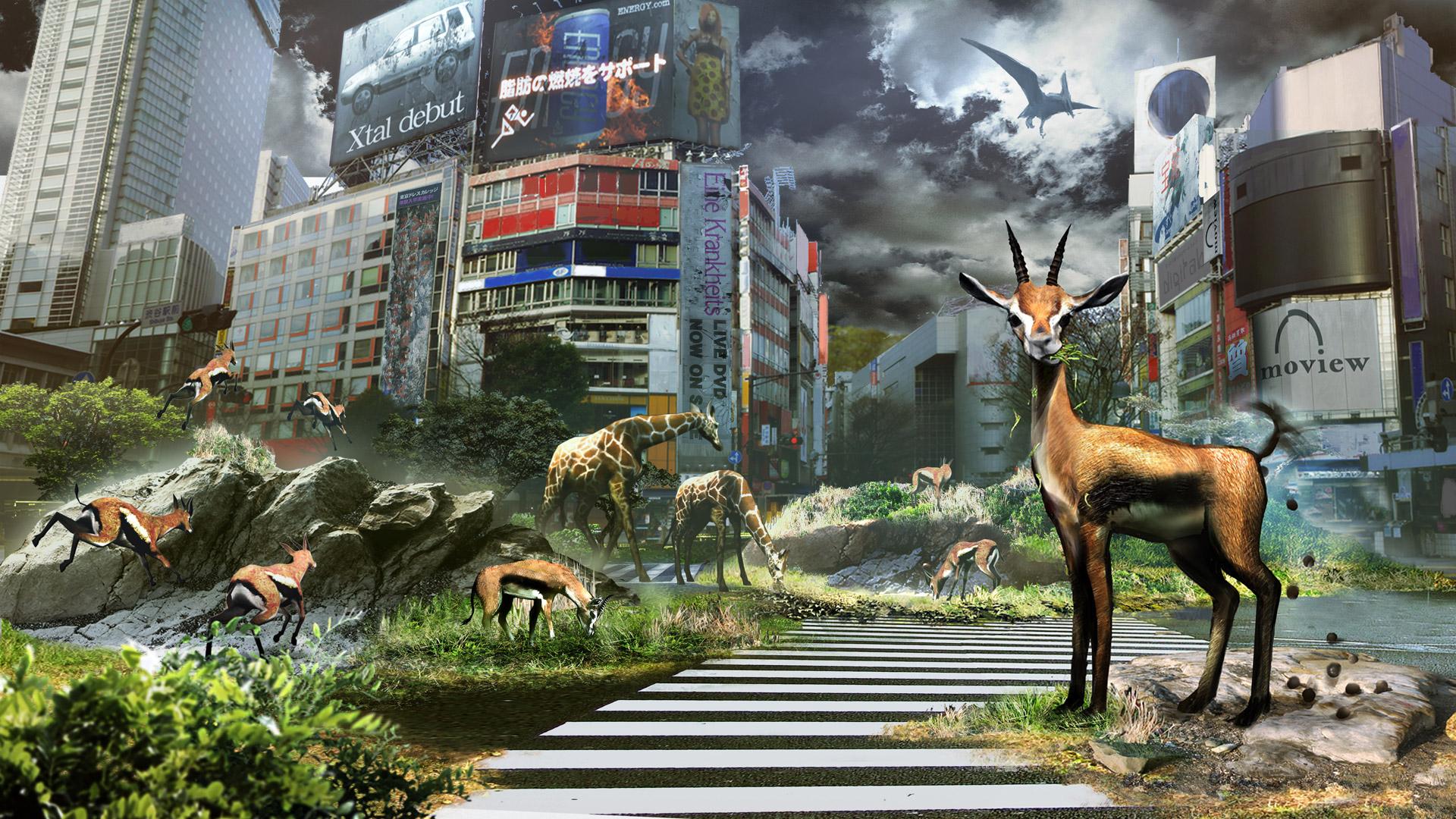 Free Tokyo Jungle Wallpaper in 1920x1080