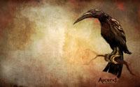 Free Ascend: Hand of Kul Wallpaper
