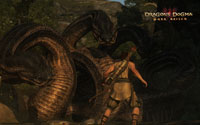 Free Dragon's Dogma Wallpaper