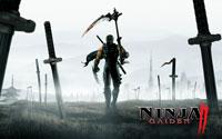 Free Ninja Gaiden 2 Wallpaper