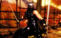 Free Ninja Gaiden Sigma Wallpaper
