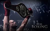 Free Real Boxing Wallpaper