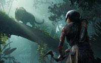 Free Shadow of the Tomb Raider Wallpaper