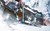 Free Winter Sports 2011 Wallpaper