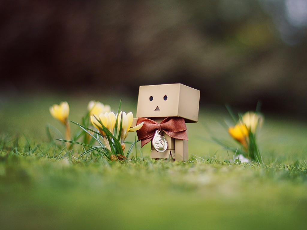 Abstract Wallpaper: Danbo - Medal