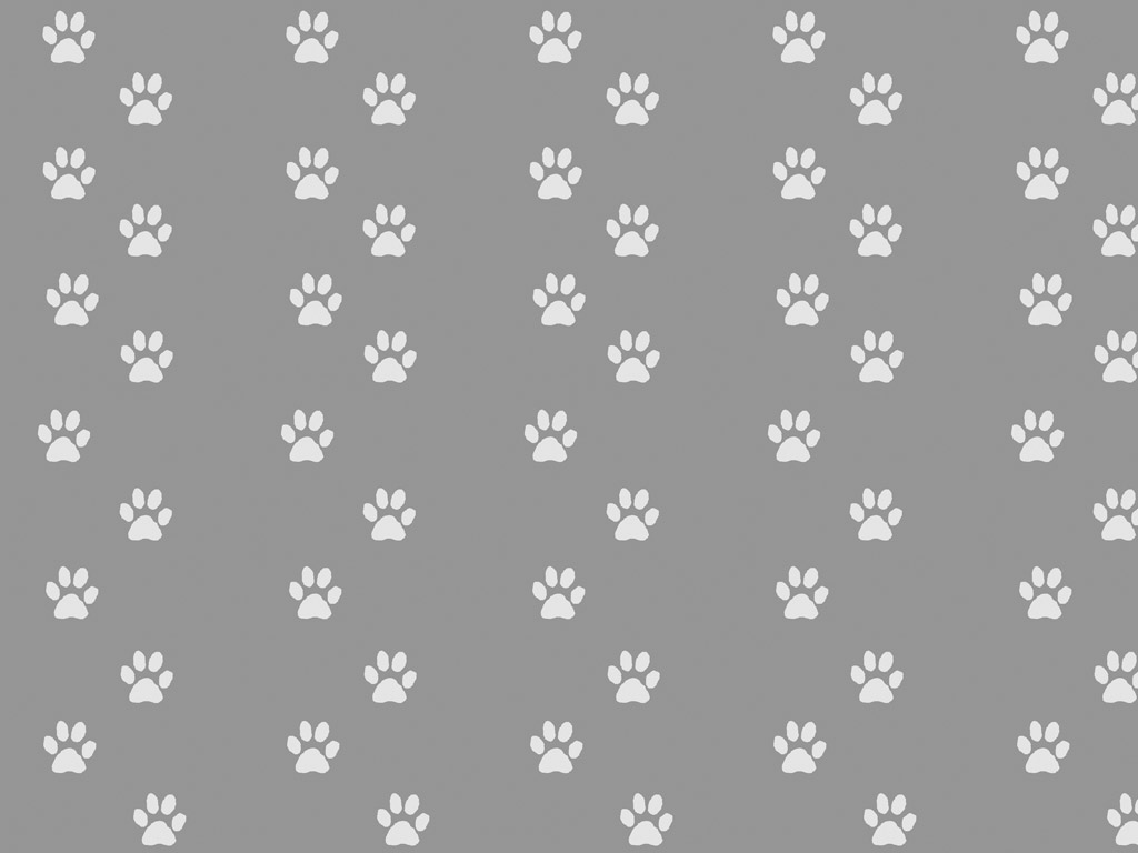 Abstract Wallpaper: Dog Paws
