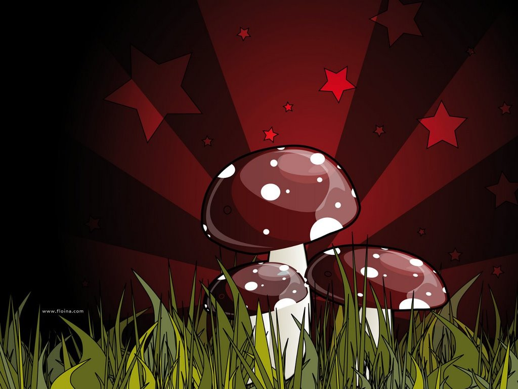 Abstract Wallpaper: Funghi