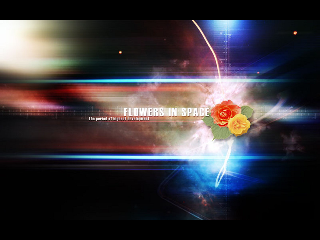 Abstract Wallpaper: Graphic Duel - Molo vs Mr. Hardar (Flowers in Space)