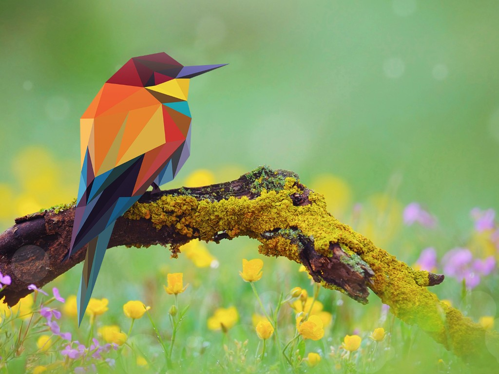 Abstract Wallpaper: Low Poly Bird