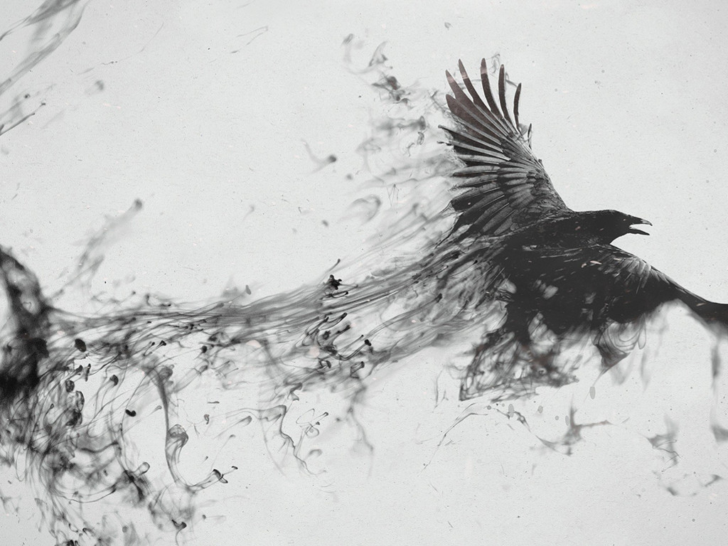 Abstract Wallpaper: Smoke Crow