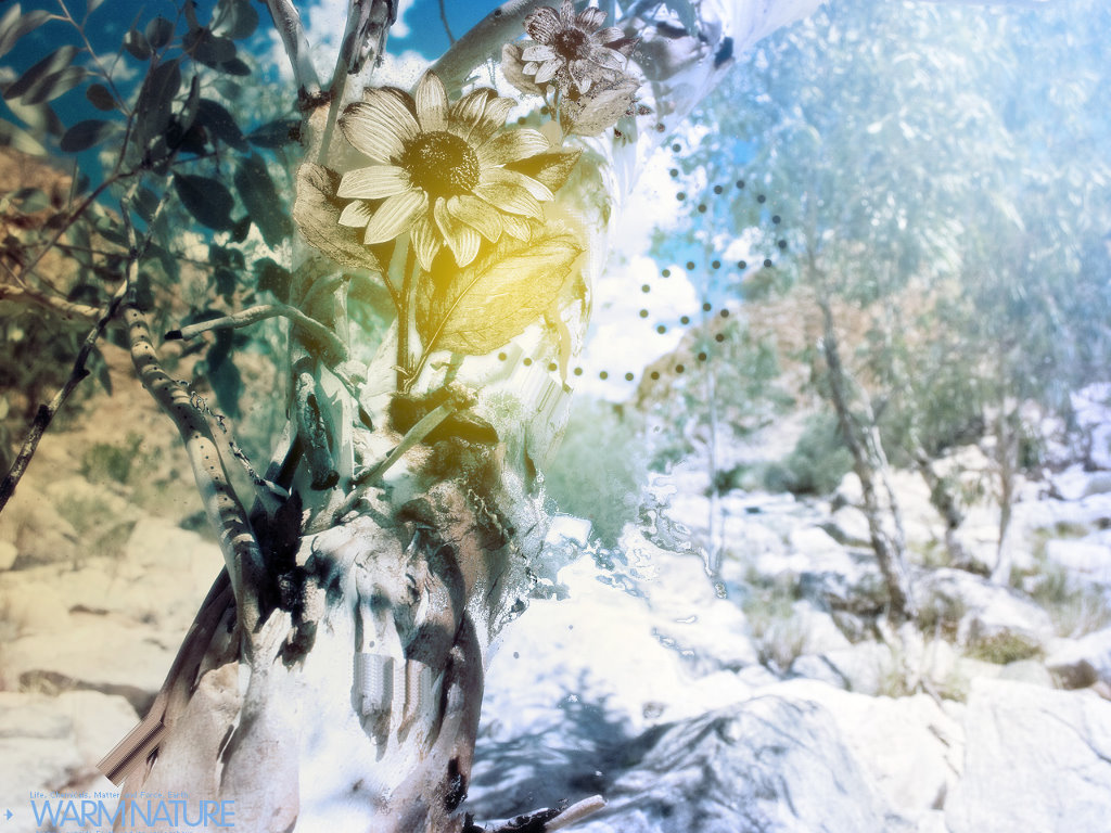 Abstract Wallpaper: Warm Nature