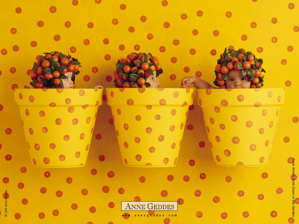 Artistic Wallpaper: Anne Geddes - Dots