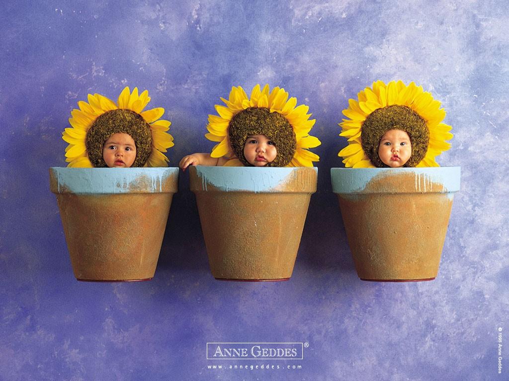 Artistic Wallpaper: Anne Geddes - Sunflowers