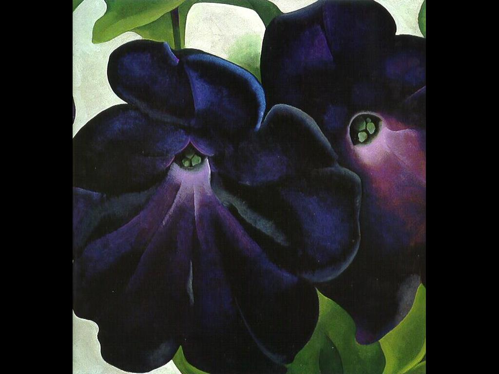 Artistic Wallpaper: Georgia O'Keefe - Black and Purple Petunias