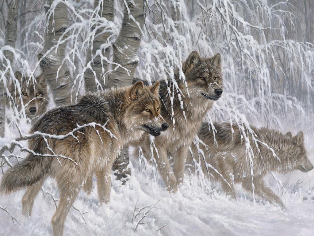 Artistic Wallpaper: Larry Fanning - Edge of Winter
