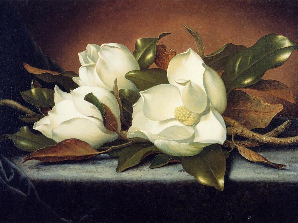 Artistic Wallpaper: Martin Johnson Heade - Magnolia Grandiflora