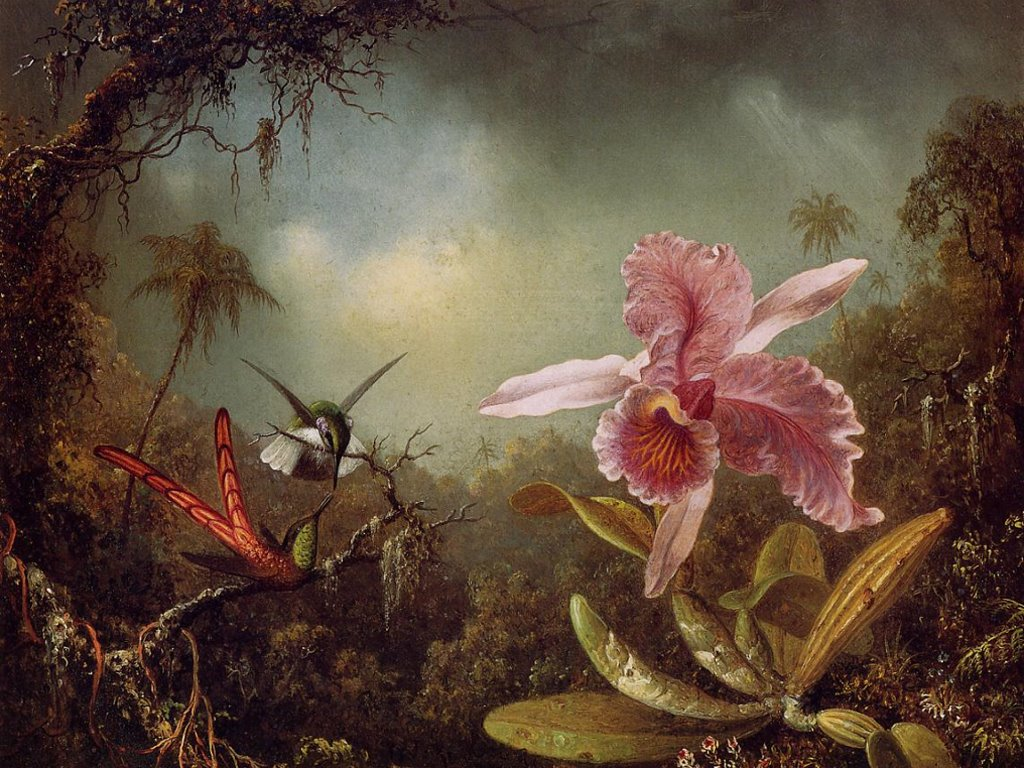 Artistic Wallpaper: Martin Johnson Heade - Orchid with Two Hummingbirds