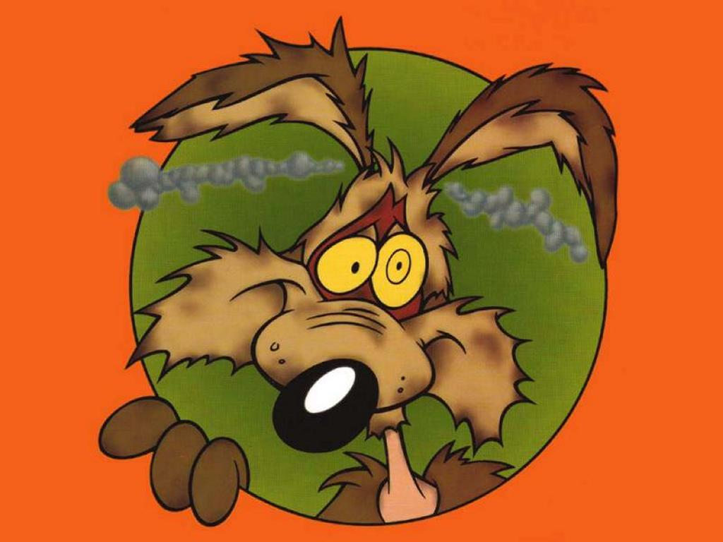Cartoons Wallpaper: Coyote