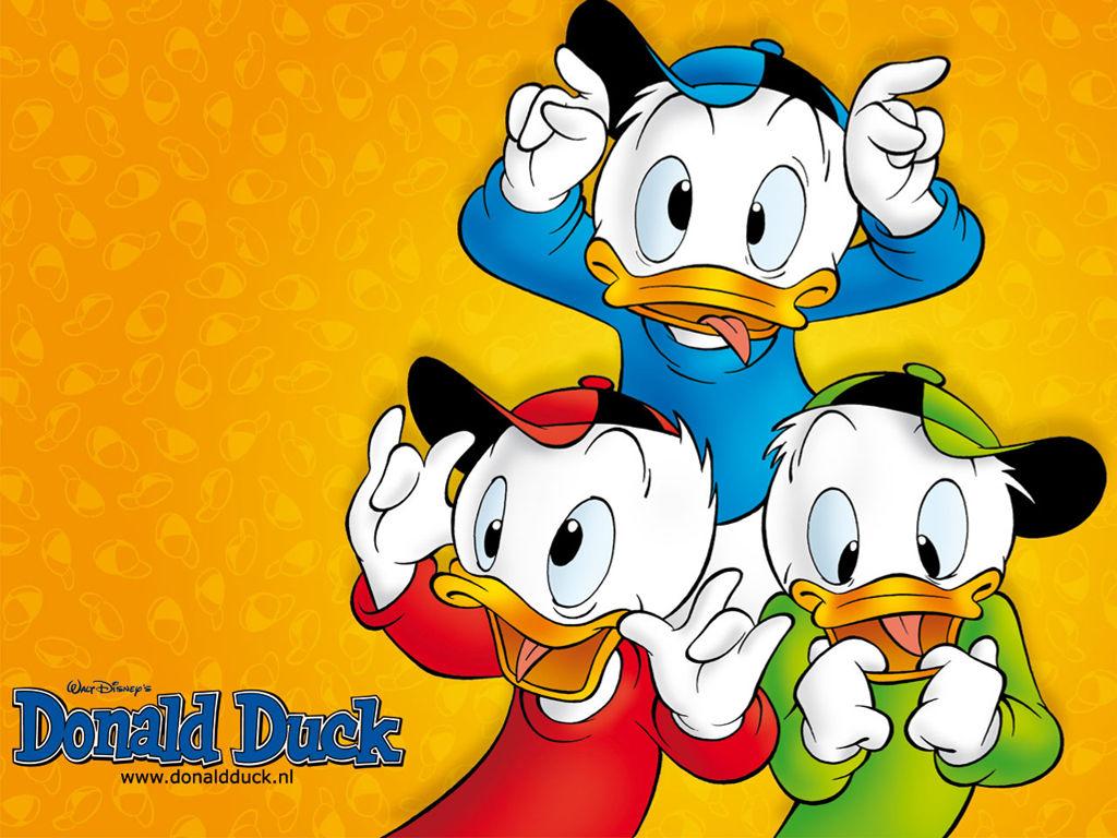Cartoons Wallpaper: Donald Duck - Nephews