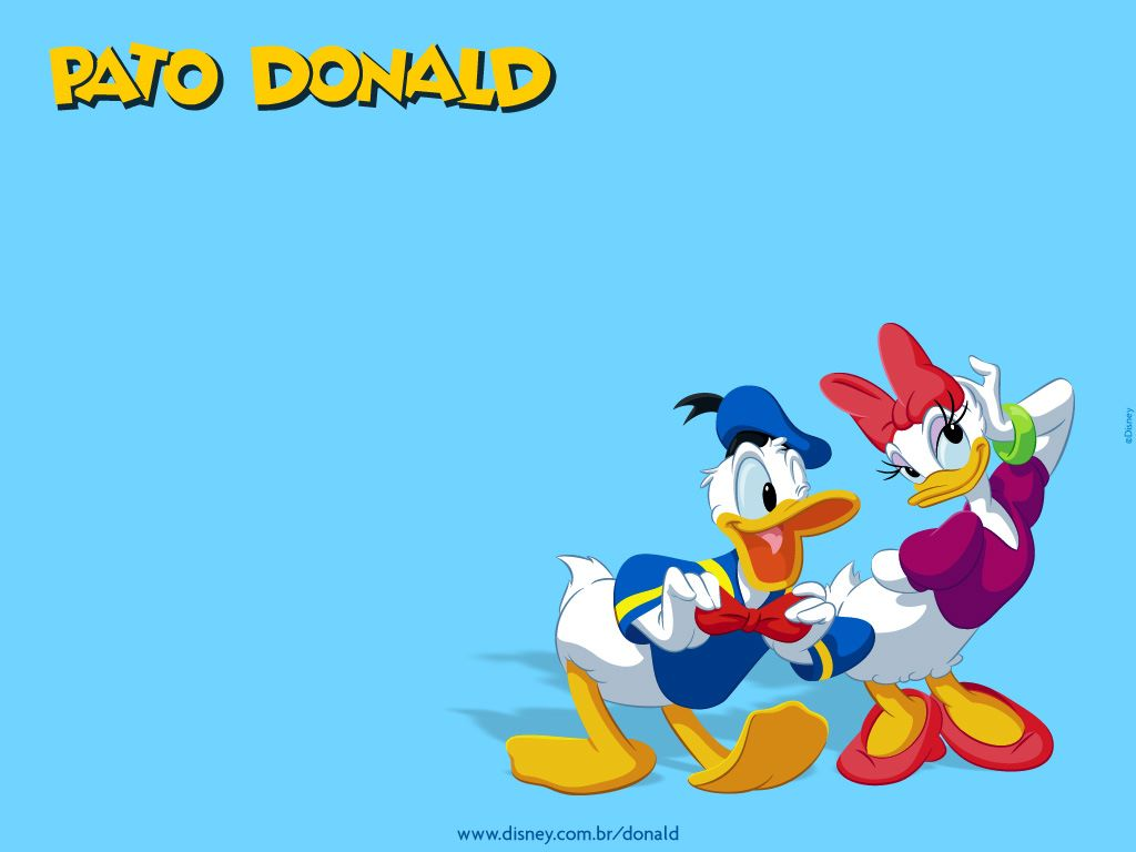 Cartoons Wallpaper: Donald Duck and Daisy