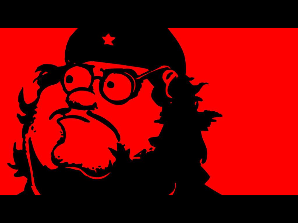Cartoons Wallpaper: Family Guy - Che Guevara