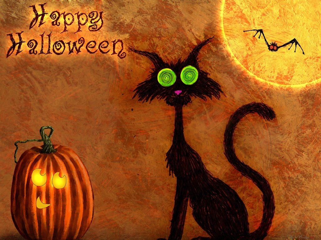 Cartoons Wallpaper: Halloween - Spooky Cat