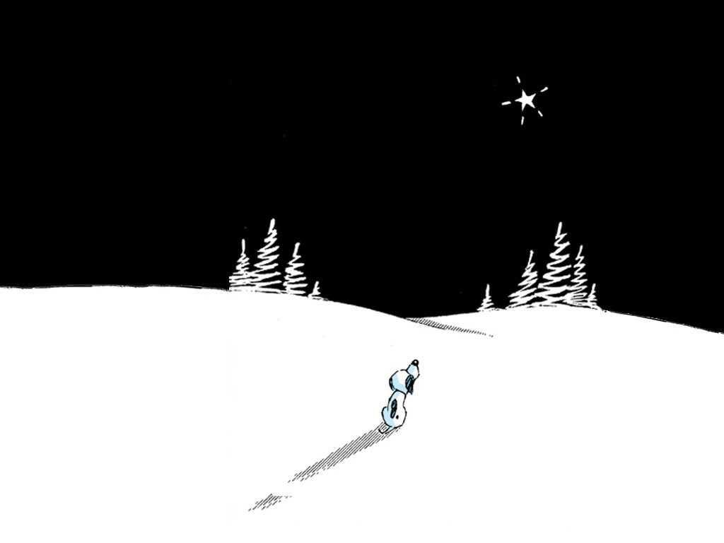 Cartoons Wallpaper: Lone Star