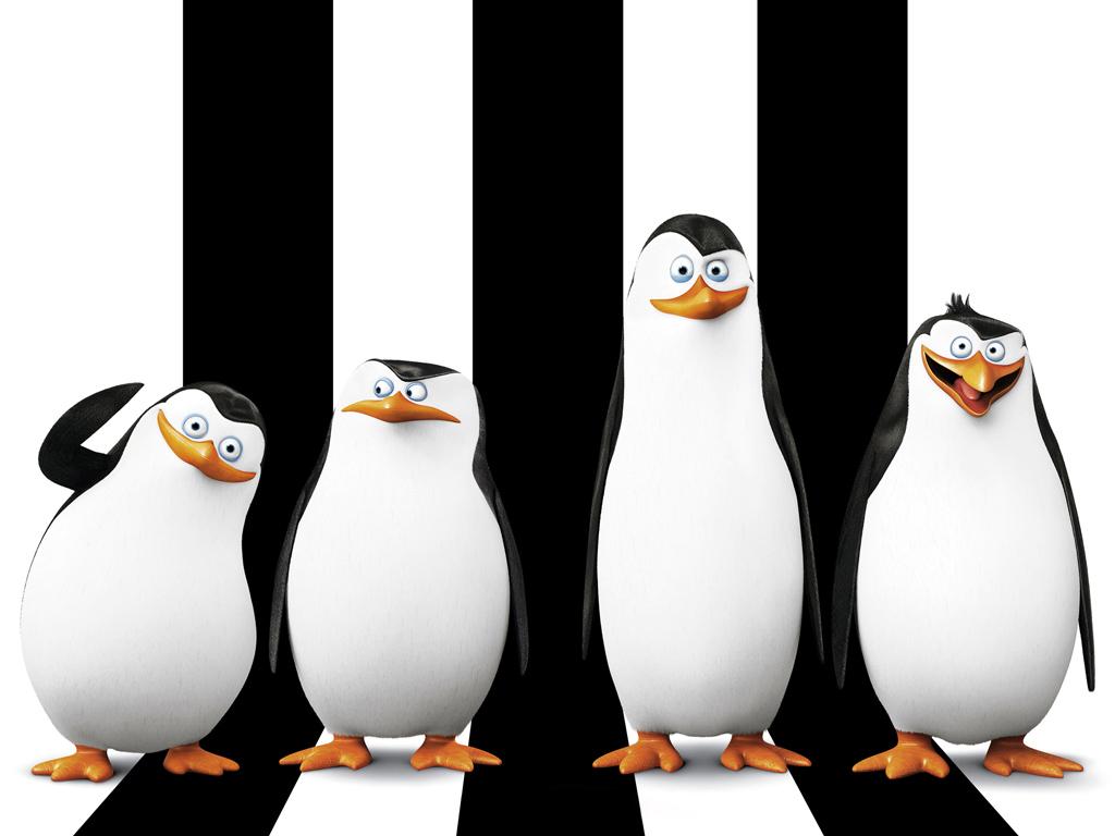 Cartoons Wallpaper: Penguins of Madagascar