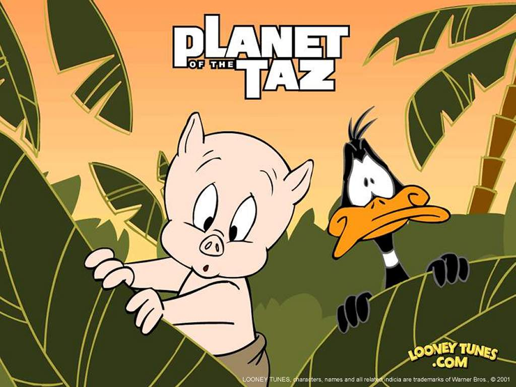 Cartoons Wallpaper: Planet of Taz