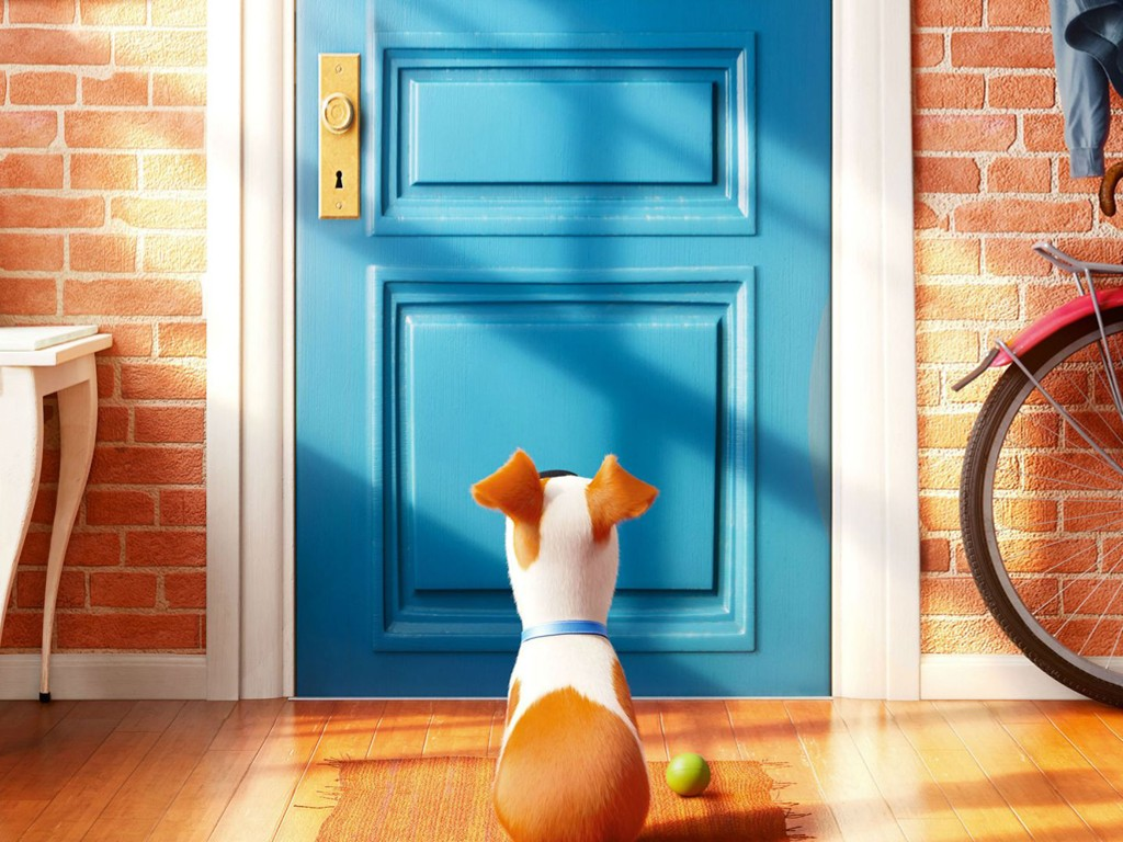 Cartoons Wallpaper: The Secret Life of Pets
