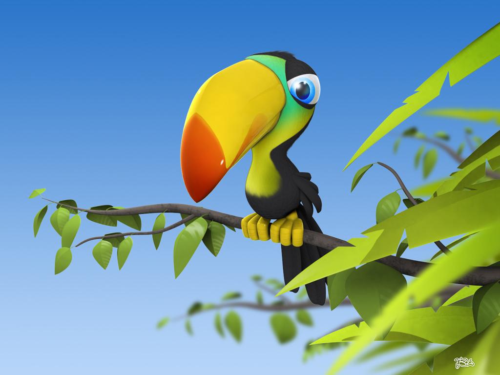 Cartoons Wallpaper: Tropical Bird