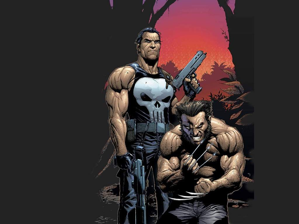 Comics Wallpaper: Punisher and Wolverine