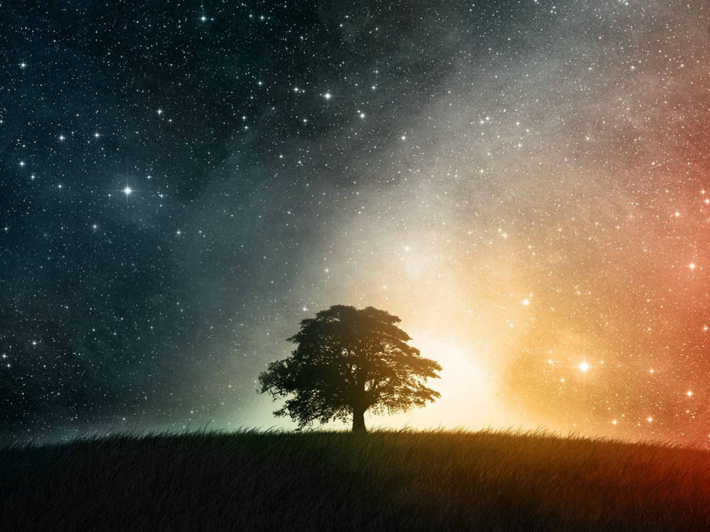 Fantasy Wallpaper: Cosmic Tree