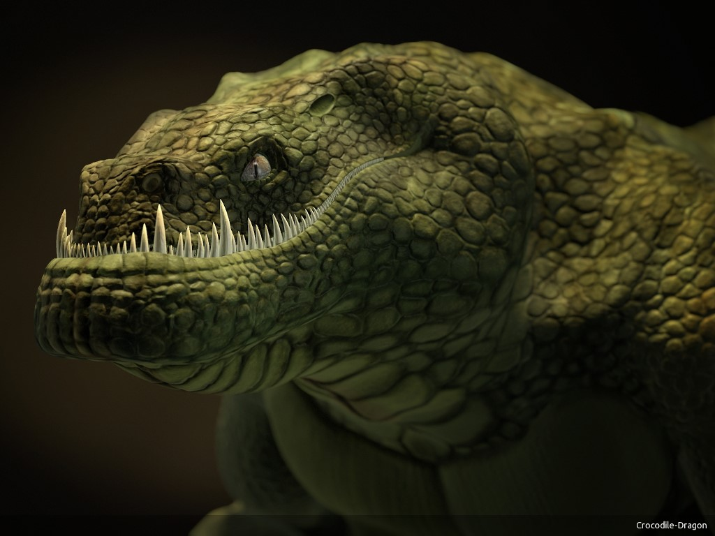 Fantasy Wallpaper: Dragon Crocodile