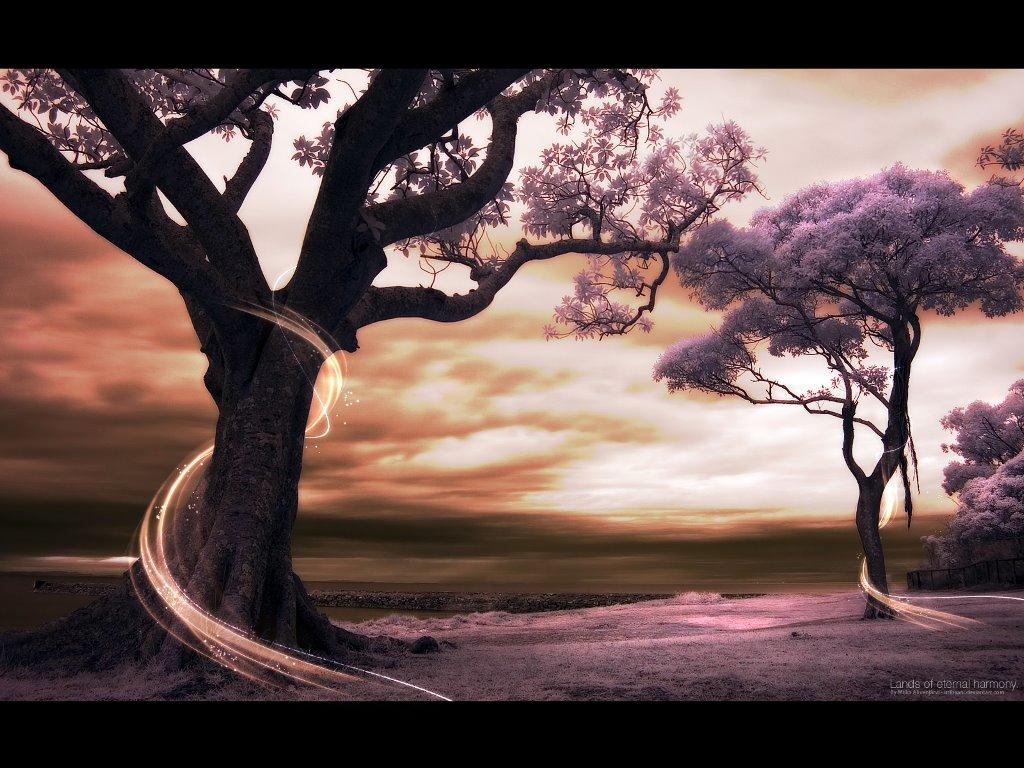 Fantasy Wallpaper: Lands of Eternal Harmony
