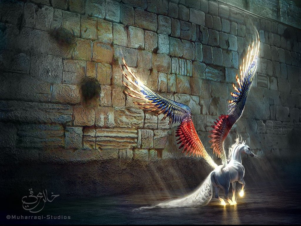 Fantasy Wallpaper: Pegasus