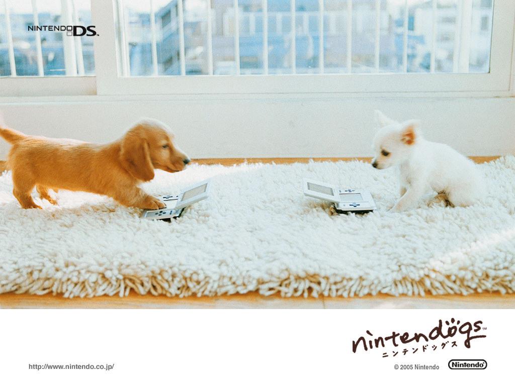 Games Wallpaper: Nintendogs