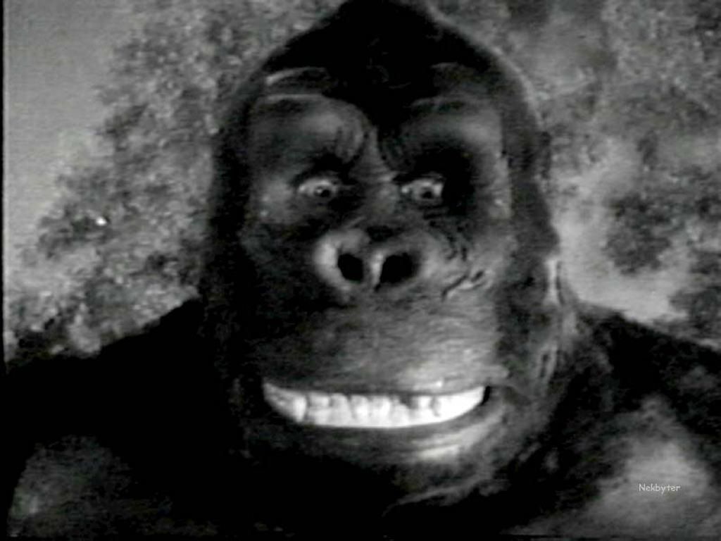 Movies Wallpaper: King Kong