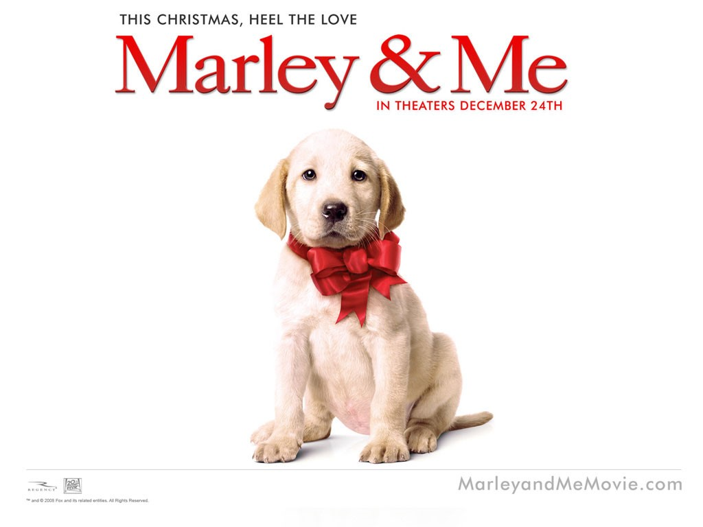Movies Wallpaper: Marley and Me