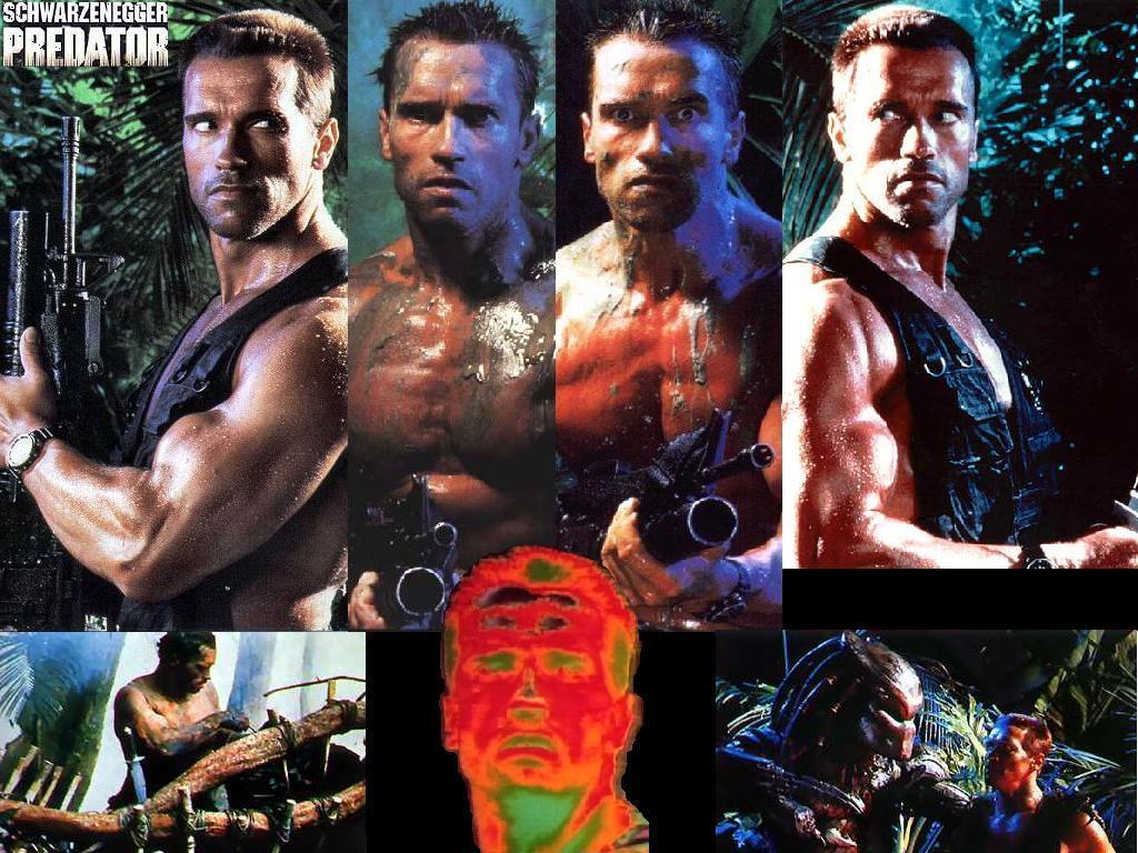 Movies Wallpaper: Predator (by Orhan Ucmus)