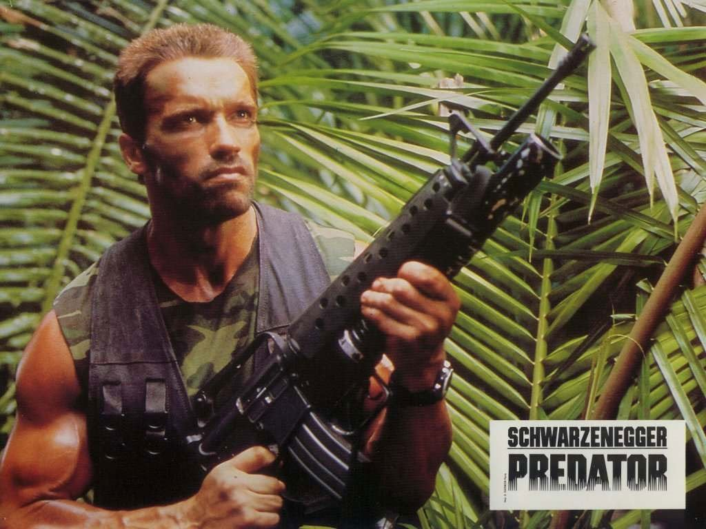 Movies Wallpaper: Predator - Dutch